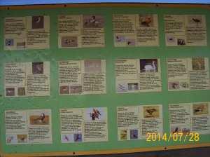 lemnos 2014 050